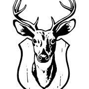 Mounted-Deer
